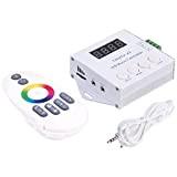 BTF-LIGHTING Digital indirizzabile Led Strip Music Controller X2 (versione aggiornata X1) For WS2811 WS2812B SK6812RGB 6803 WS2813 Led strip DC5C-24V